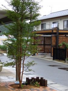 ナチュラルT02姫路市N様邸3